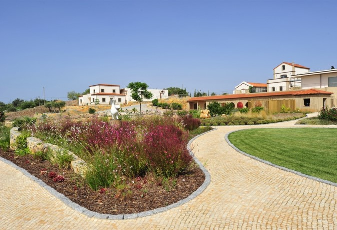 Luxury Estate with Vineyards - Photo Gallery